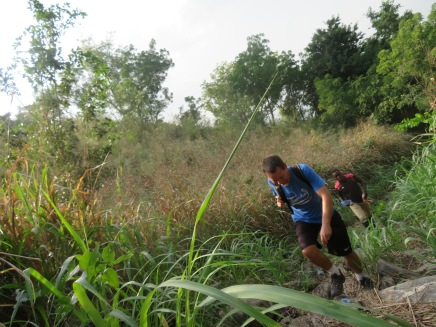 The proper trail